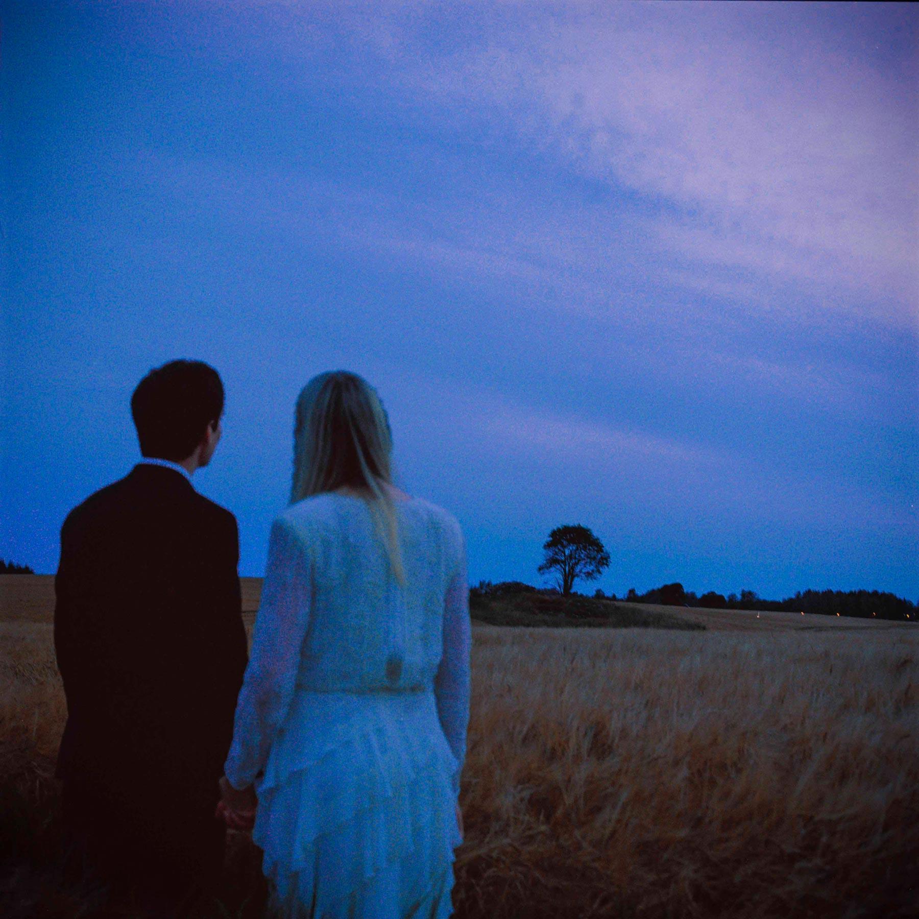 par ser på et tre og holder hender, bryllupsfotograf reiser litt ut av Oslo