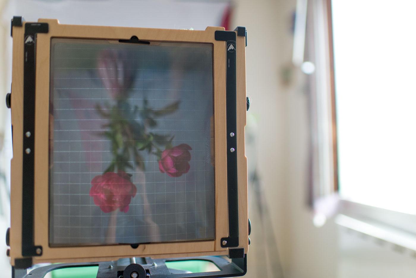 kamera og peoner